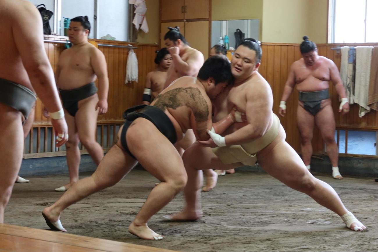 若い衆に胸を出す朝乃山(右)(代表撮影)