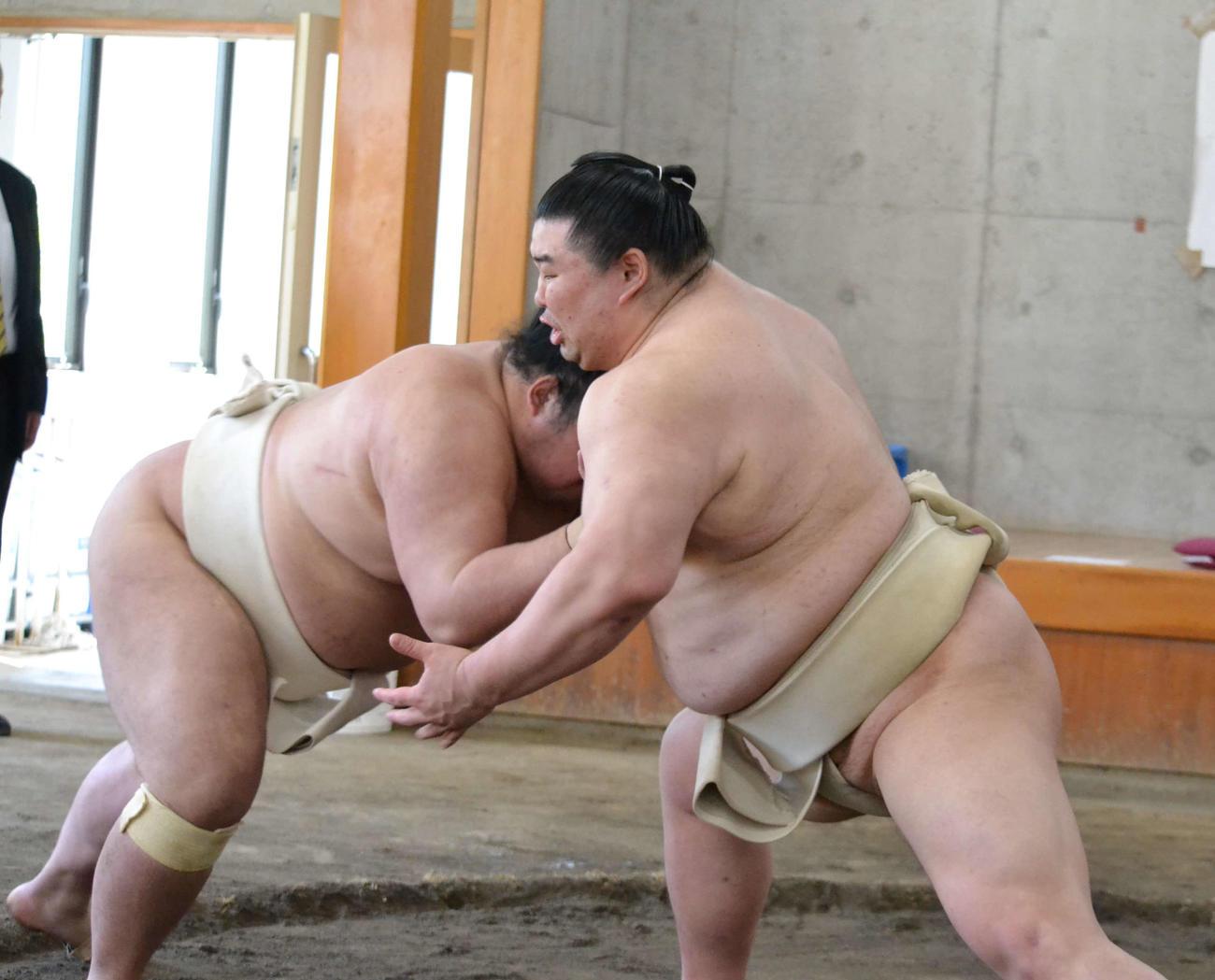 夏場所に向けた合同稽古に参加し、ぶつかりで胸を出す正代(右)(代表撮影)