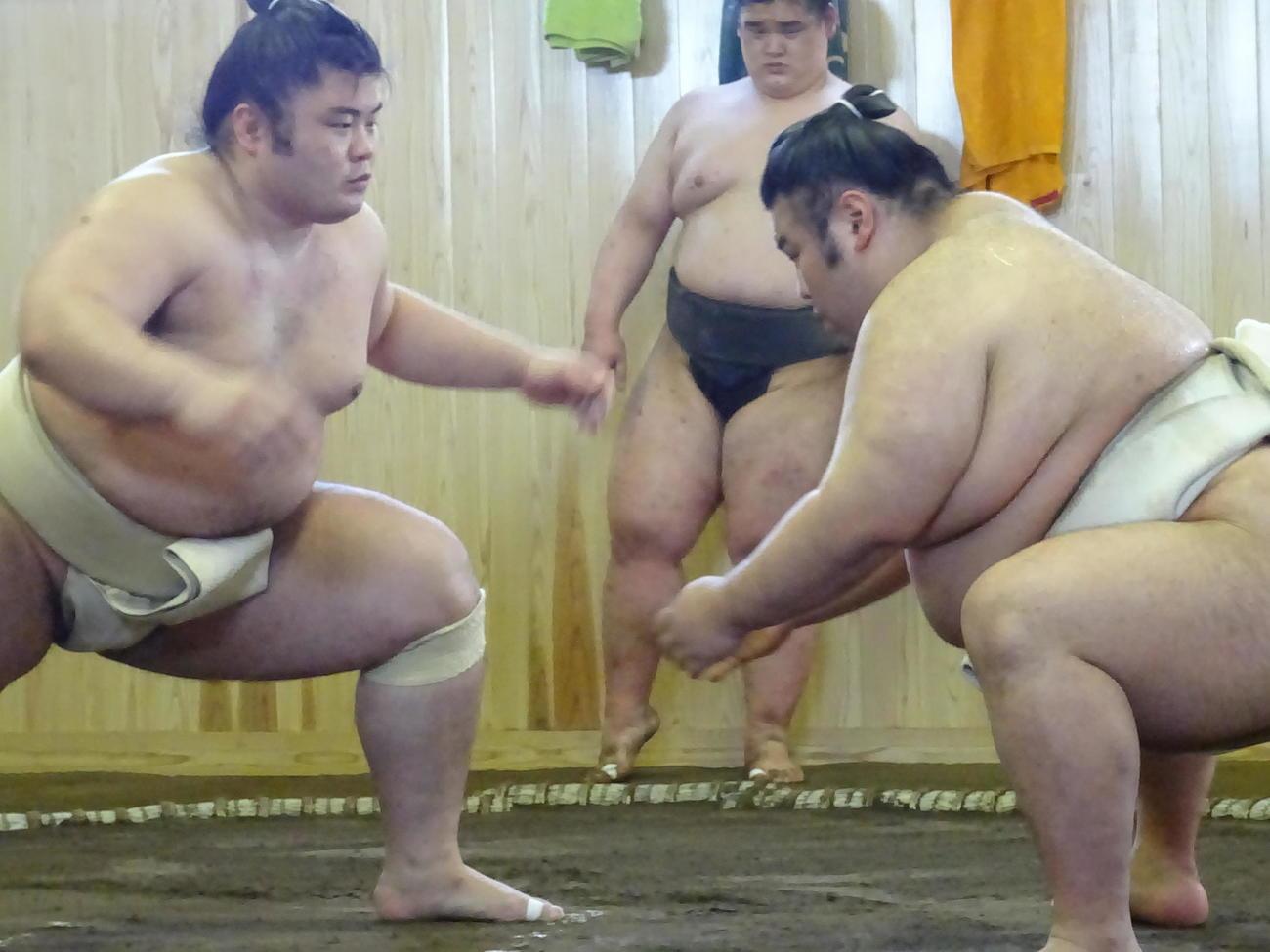 夏場所に向けて稽古に励む貴健斗(左)と貴景勝(代表撮影)