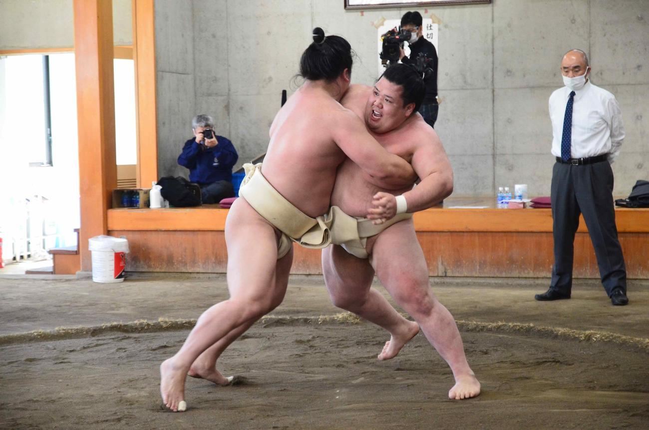 夏場所に向けた合同稽古で関取衆との申し合いに参加した阿武咲(右)(代表撮影)