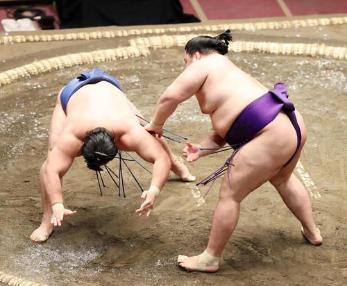 若隆景(左)を突き落としで破る明生(撮影・鈴木正人)