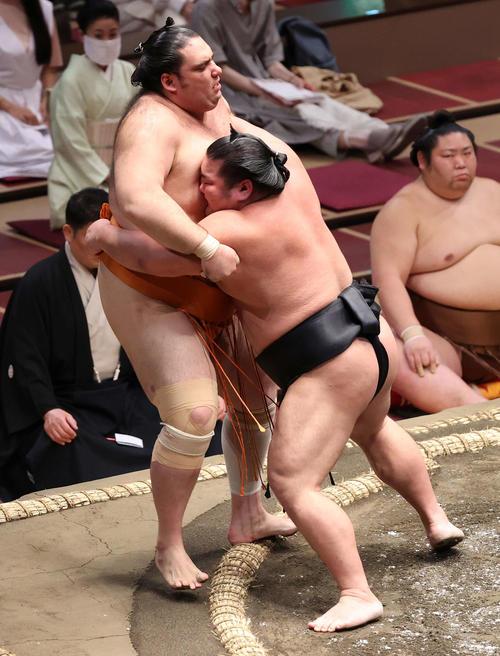 魁聖(左)を寄り切る千代ノ皇(撮影・河野匠)