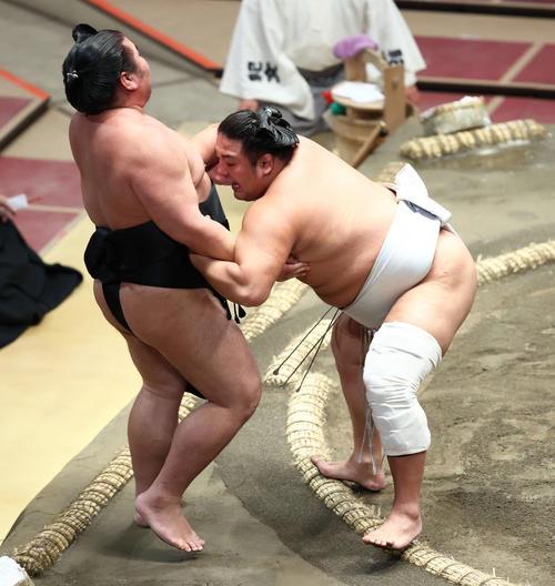 千代ノ皇(左)を寄り切りで破る旭大星(撮影・河田真司)