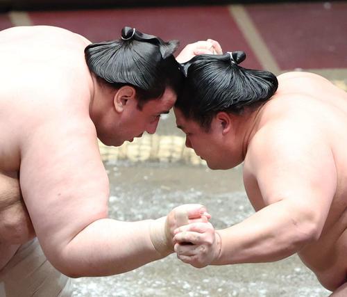 頭をぶつけ合う碧山(左)と宇良(撮影・河田真司)