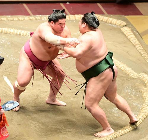 大栄翔(左)は千代大龍を押し出しで破る(撮影・小沢裕)