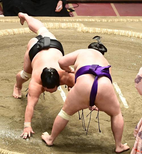 明生(右)は妙義龍を肩すかしで破る(撮影・小沢裕)