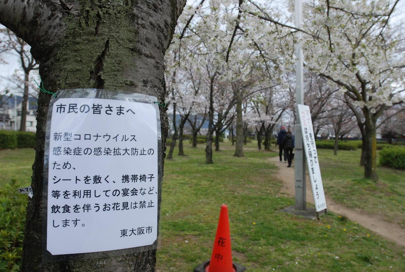 昨春の花見シーズン、東大阪市の花園中央公園の桜の木には「飲食を伴う花見は禁止」を伝える貼り紙(撮影・松浦隆司)
