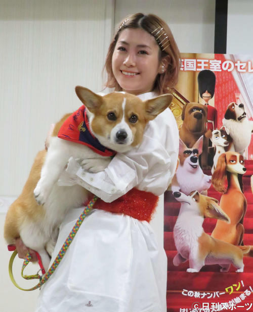 映画「ロイヤルコーギー レックスの大冒険」愛犬同伴試写会に愛犬バルーと出席したIMALU(撮影・大井義明)