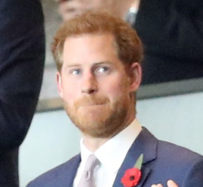 "Photo of Prince Henry says ""royal slimming"" and decides to leave"