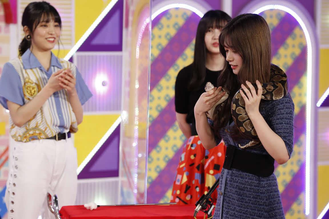 ABEMA「乃木坂46時間TV」でヘビを肩に巻く寺田蘭世(右)