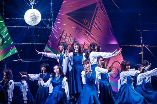 初のオンラインライブを開催した欅坂46。中央上は菅井友香、中央手前は小池美波