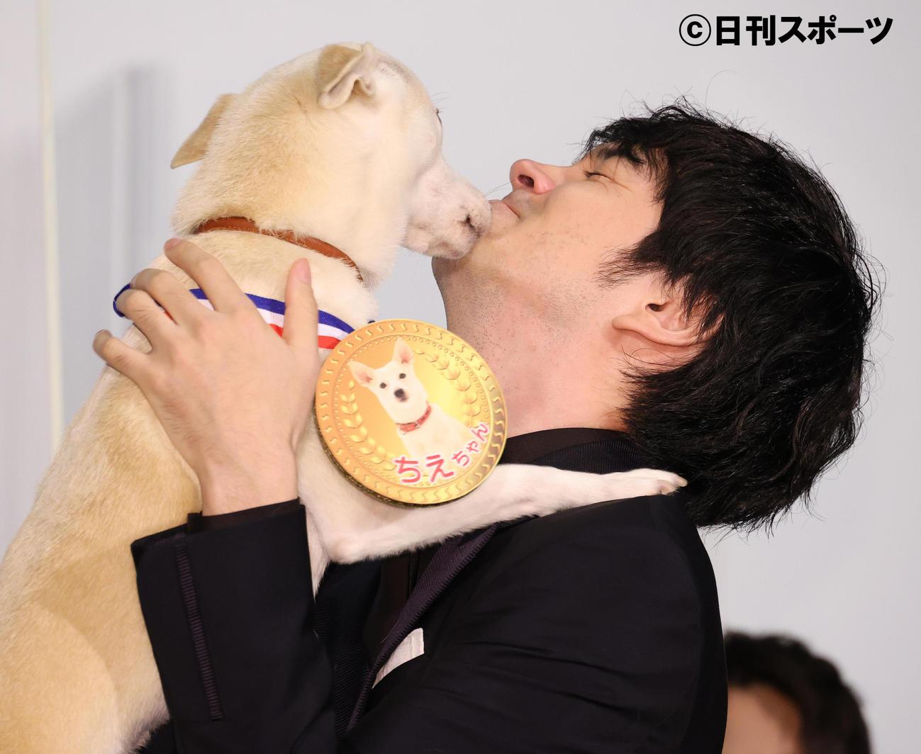 共演した保護犬の「ちえ」に金メダルをプレゼントし、顔をなめられる林遣都(撮影・中島郁夫)