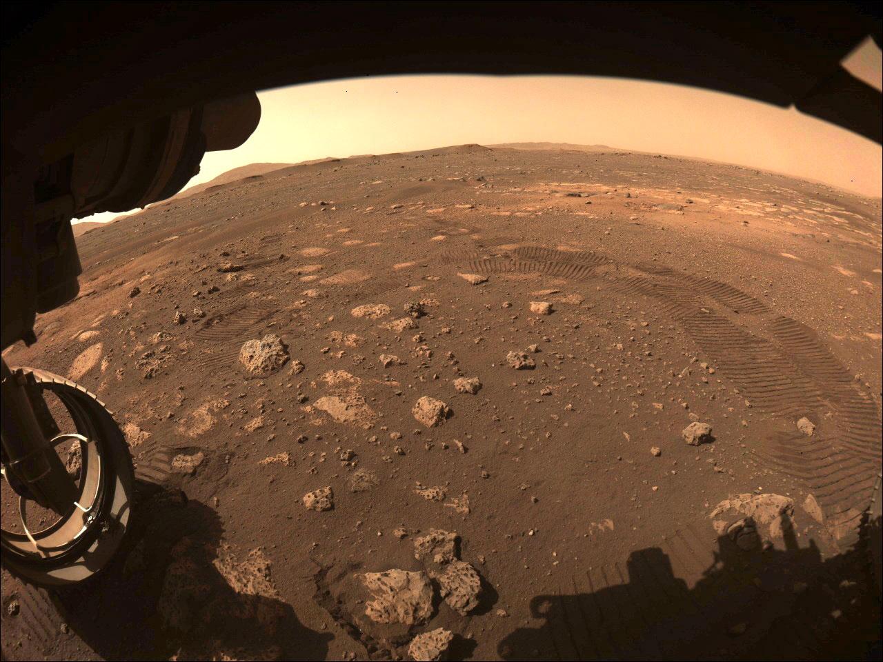 探査車パーシビアランスが火星の初走行時に撮影した画像。タイヤの跡が残っている(NASA提供)(共同)