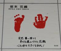 坂本花織は阪神大震災5年後に舞い降りた神戸っ子 - 社会 : 日刊スポーツ