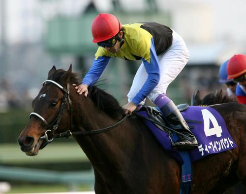 第51回有馬記念 引退レースを快勝、ゴール後花道を飾ったディープインパクトにそっと手を差し伸べる武豊騎手(2006年12月24日撮影)