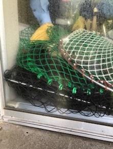 市立福岡女子高に侵入し、網で捕らえられた猿(福岡市教育委員会提供)