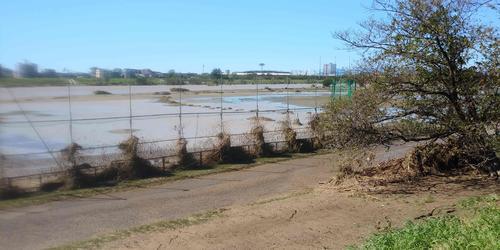 13日午前10時過ぎ、かつて巨人が練習場としていた多摩川グラウンドが冠水した。対岸に見えるのは川崎フロンターレの本拠地、等々力陸上競技場(撮影・山内崇章)