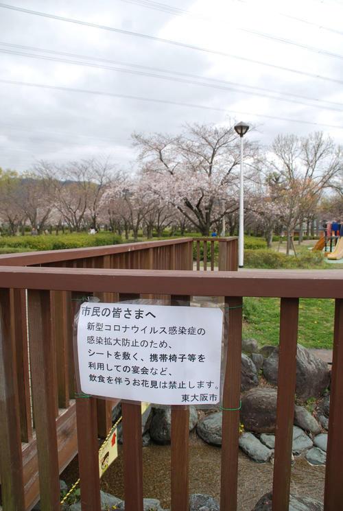 東大阪市の花園中央公園の「飲食を伴う花見は禁止」を伝える貼り紙(撮影・松浦隆司)