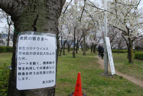 東大阪市の花園中央公園の桜の木に掲示された「飲食を伴う花見は禁止」を伝える貼り紙(撮影・松浦隆司)