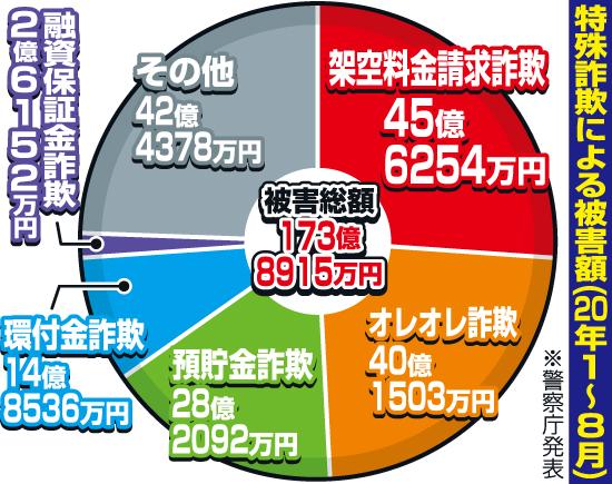 特殊詐欺による被害額の円グラフ