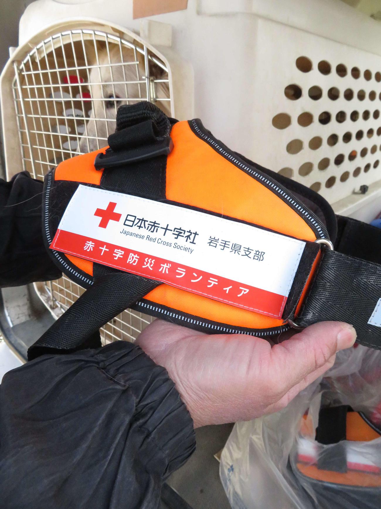 日本赤十字社岩手県支部と協定を結び、同支部から贈られたハーネス(胴輪)。後ろは車内で待機する災害救助犬「さち」(撮影・近藤由美子)