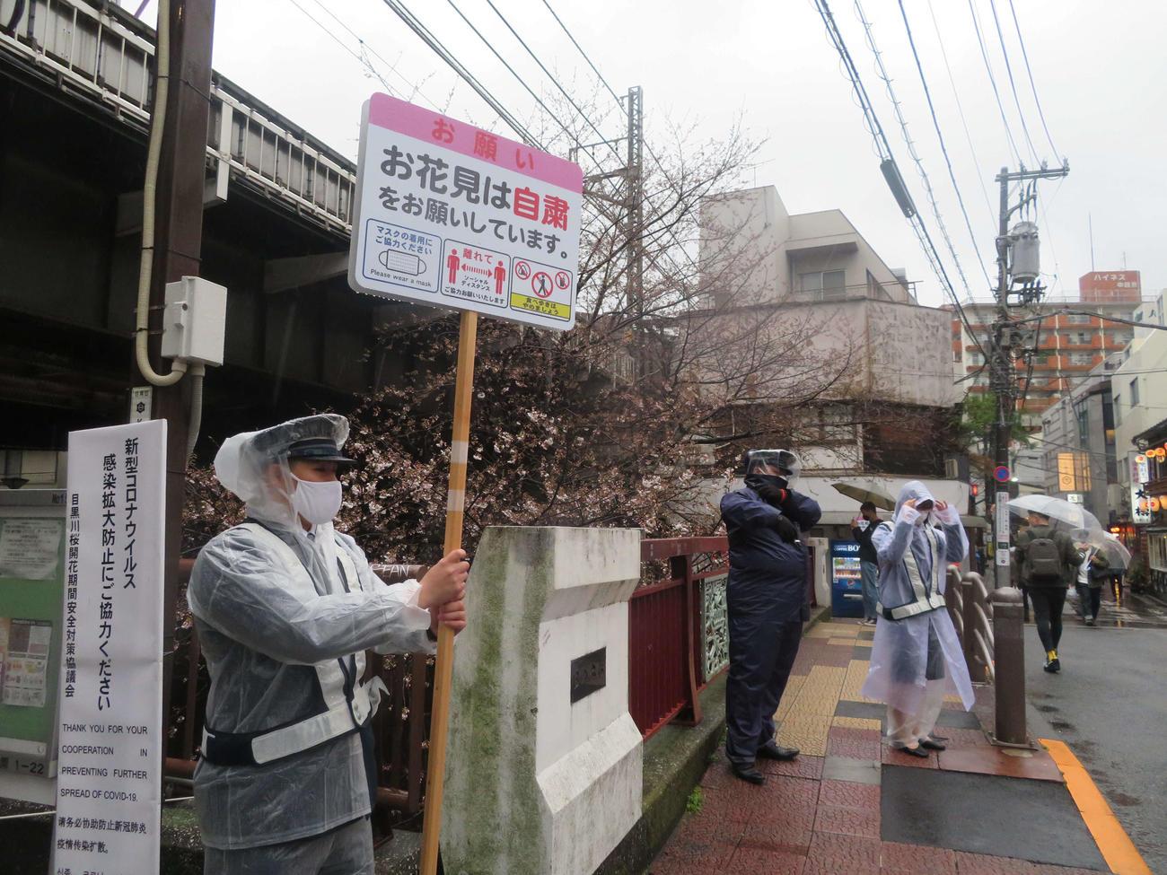 目黒川での花見の自粛を呼びかける看板を持った警備員(撮影・沢田直人)
