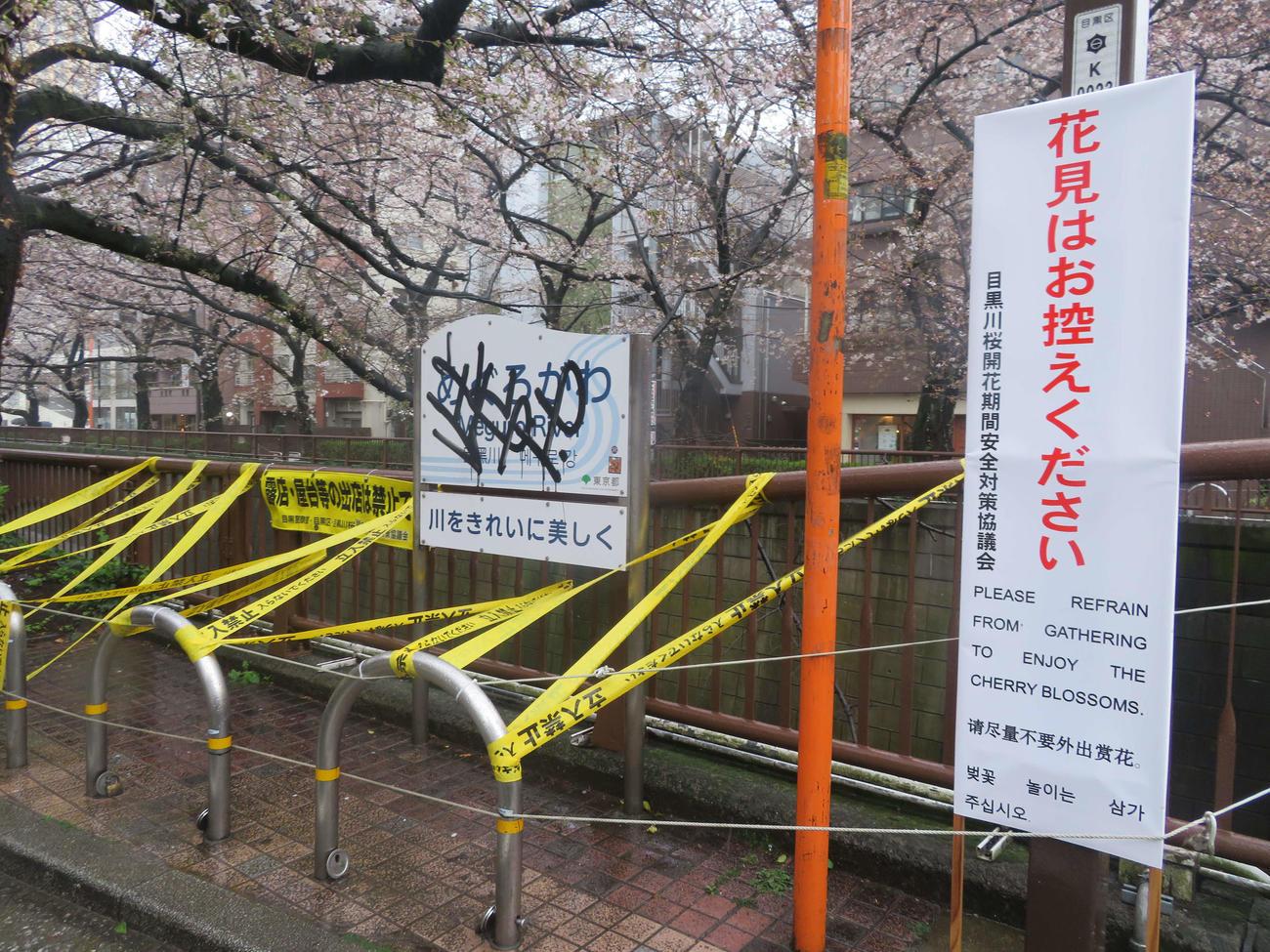 目黒川沿いに設置された花見の自粛を呼びかける看板(撮影・沢田直人)