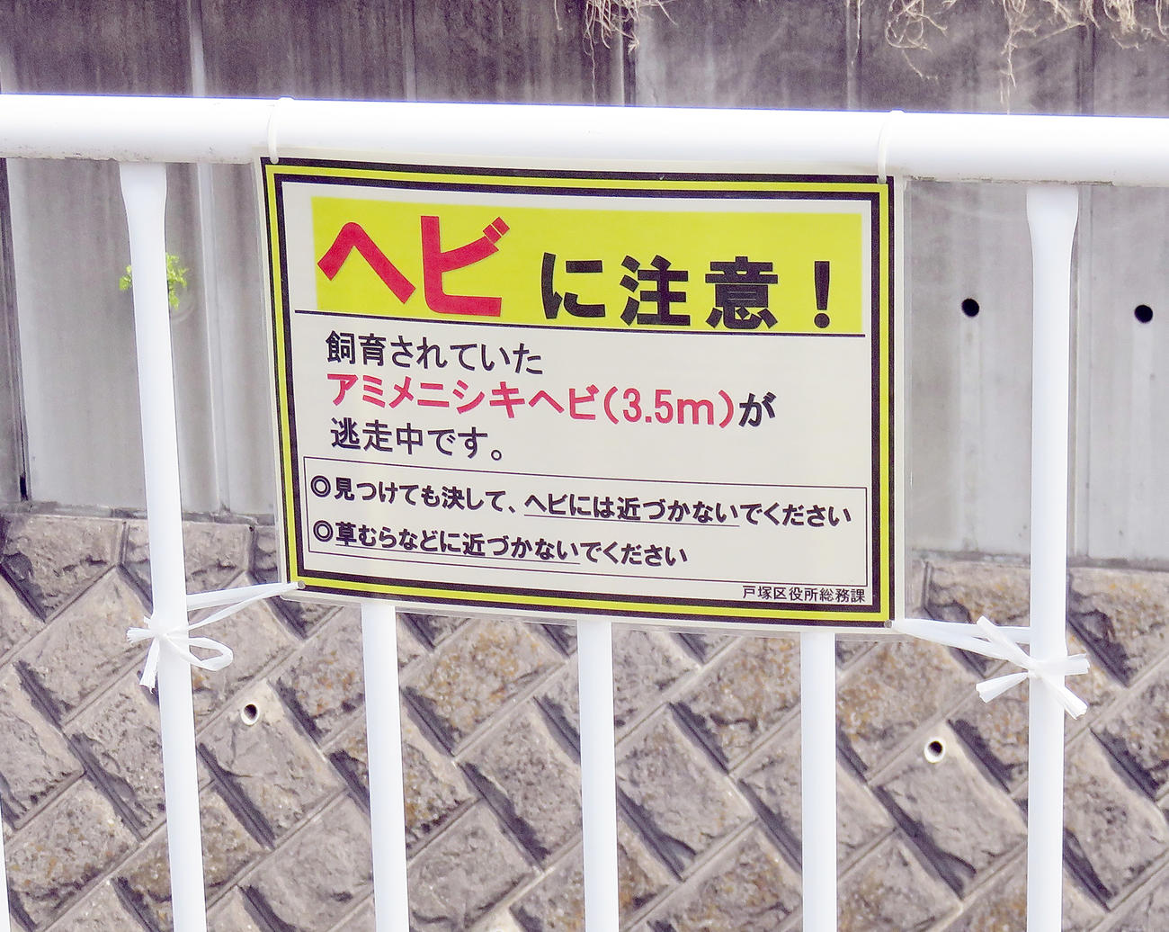 アミメニシキヘビが逃げ出した近くの名瀬川に掲示されている注意喚起を促す看板(撮影・鎌田直秀)
