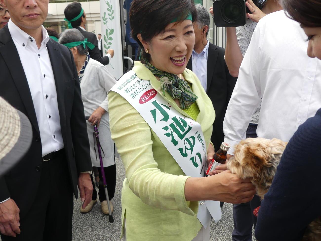 愛犬のそうちゃんに激励され、満面の笑みの小池百合子氏(16年7月)