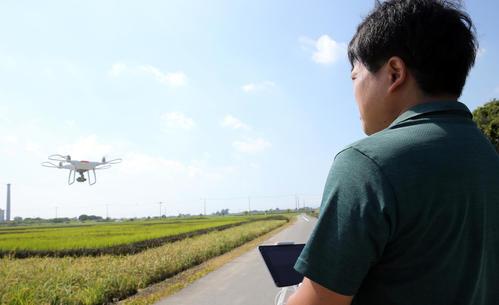 「田んぼアート」をドローン撮影する河野カメラマン
