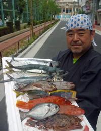 静岡・久料 根魚&アジ自ら釣って調理し味わう - 釣り : 日刊スポーツ