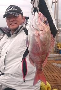 静岡・御前崎 駿河湾のマダイ、数釣り今後も好調 - 釣り : 日刊スポーツ
