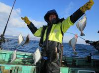 北海道・胆振沖 ソウハチ最大35センチ100匹も - 釣り : 日刊スポーツ