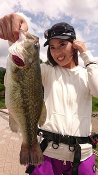 ブラックバス河口湖ダービー挑戦34cmで瞬間1位 - 釣り : 日刊スポーツ