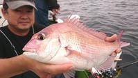 久里浜沖 マダイ船中23匹も受講生は6人で2匹… - 釣り : 日刊スポーツ