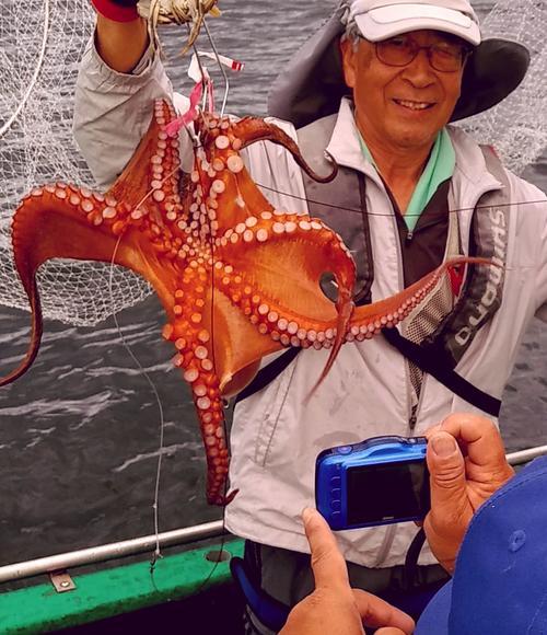 釣り上げたマダコは宮川船長がカメラに収めてHPに写真掲載してくれますよ