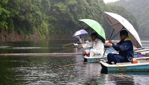 雨の三島湖。傘を広げる釣りもまた味がある
