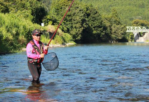 ゼロオバセの泳がせ釣りで縄張りアユを狙う筆者