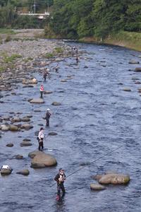 狩野川などでアユ解禁 コロナ対策もしっかりと - 釣り : 日刊スポーツ
