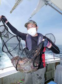 兵庫・明石「うまみ強く美味」マダコ46匹爆釣 - 釣り : 日刊スポーツ
