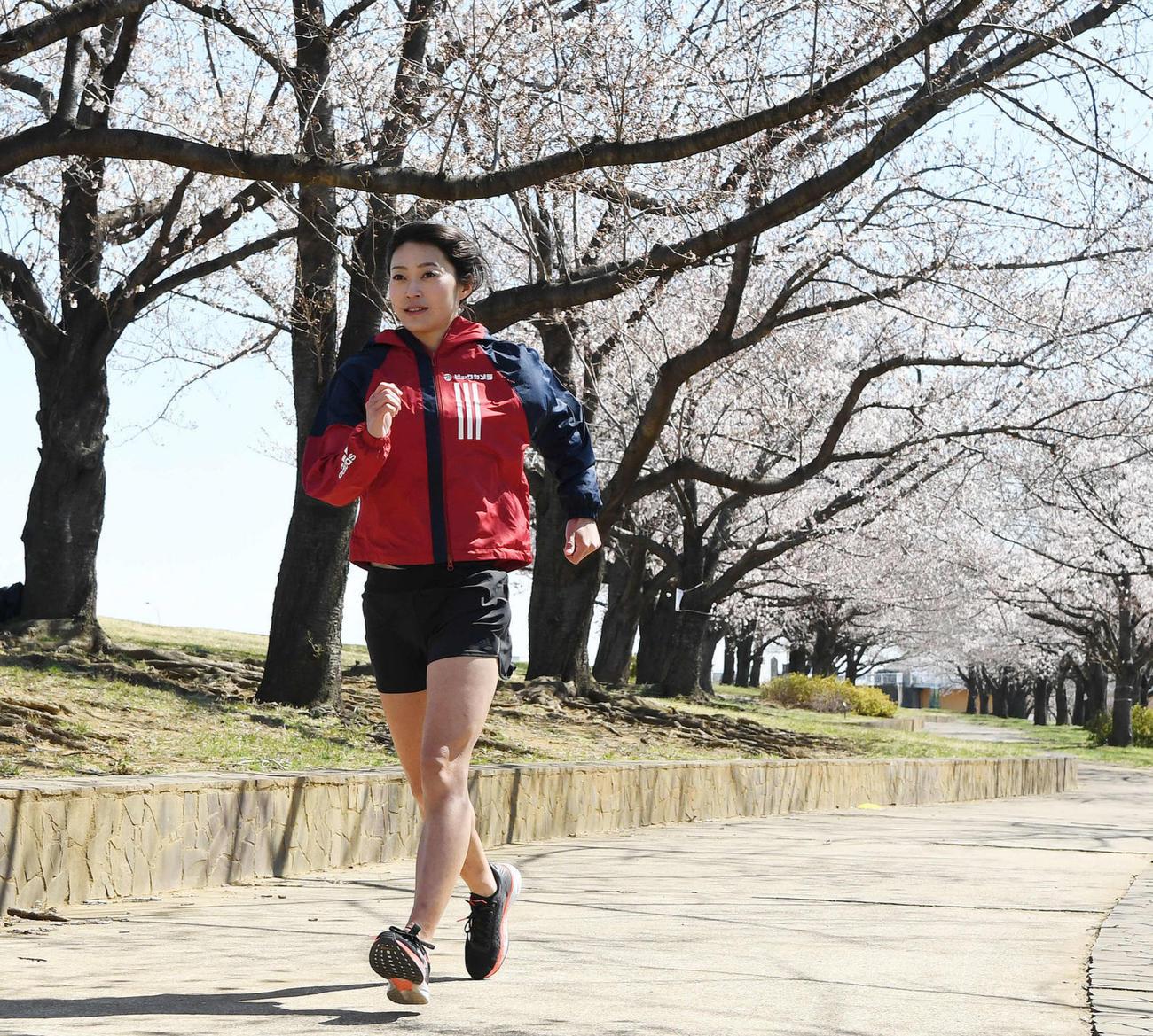 咲き誇る桜の下、練習を行う競歩の岡田(撮影・鈴木みどり)