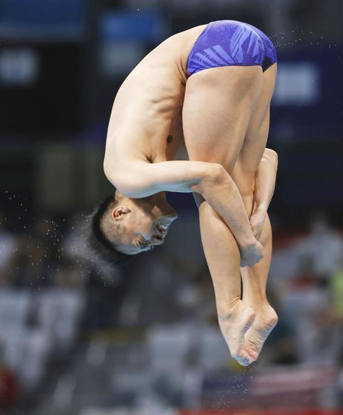 男子板飛び込み準決勝 寺内健の最終演技(共同)