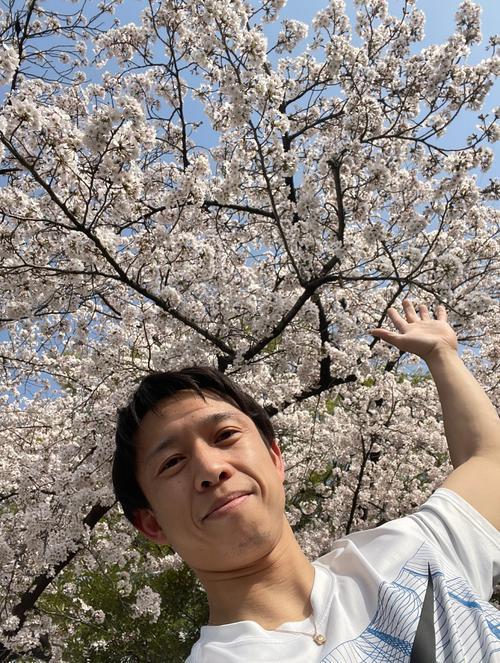 1日、ランニングコースの桜は満開でした