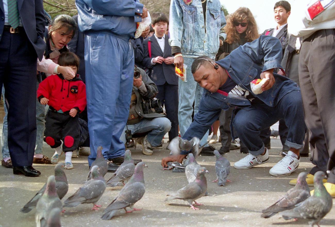上野公園でハトを素手で捕まえるマイク・タイソン(1990年1月25日)