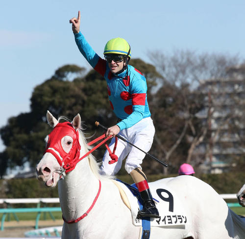 2歳新馬戦をマイヨブランで制してJRA年間213勝の新記録を達成してガッツポーズを決めるクリストフ・ルメール騎手