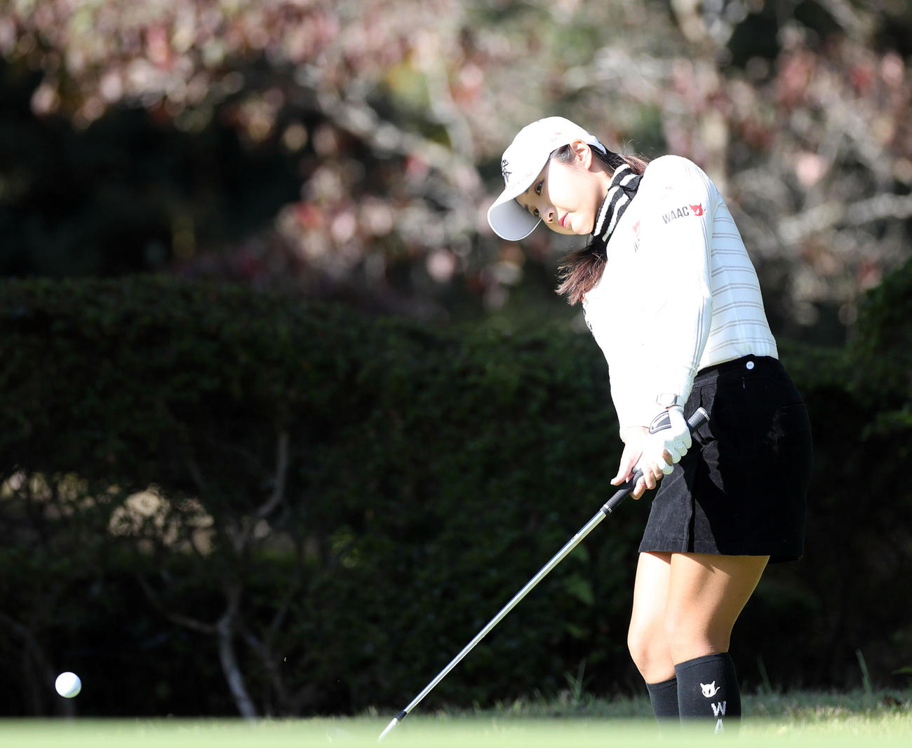 https://www.nikkansports.com/sports/golf/news/img/202011050000106-w1300_21.jpg