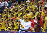 日本の応援に「統一感」なぜビブス着ているの? - 柔道 : 日刊スポーツ