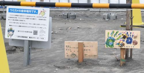 東京五輪の追加種目サーフィンのテストイベント会場に設けられたウミガメの産卵場所に立てられた札(撮影・佐々木隆史)