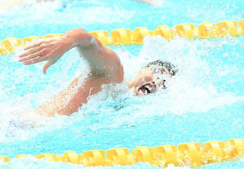 男子400メートルリレー予選 第2泳者の塩浦(撮影・鈴木みどり)