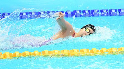 女子400メートルリレー予選 第3泳者の佐藤(撮影・鈴木みどり)